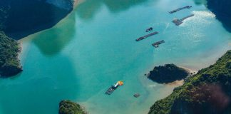 Halong Bay to photograph
