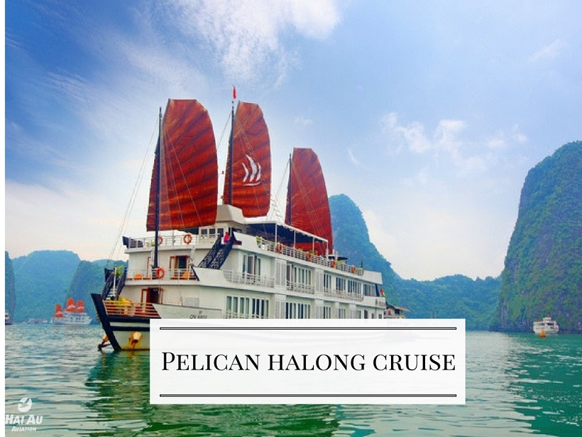 cruises-halongbay halong bay day cruises