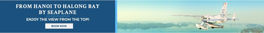 banner seaplanes